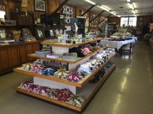 Village Store 2