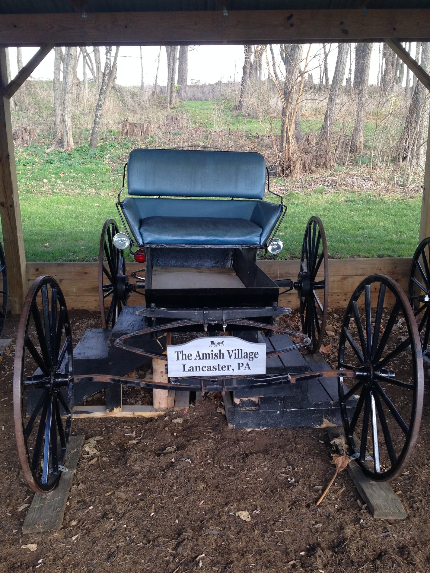 100 All About The Amish Custom Buggies