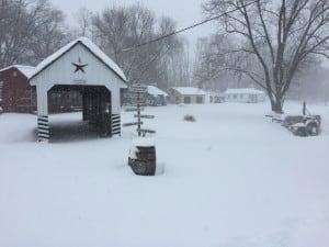 Snow Storm 2016 4