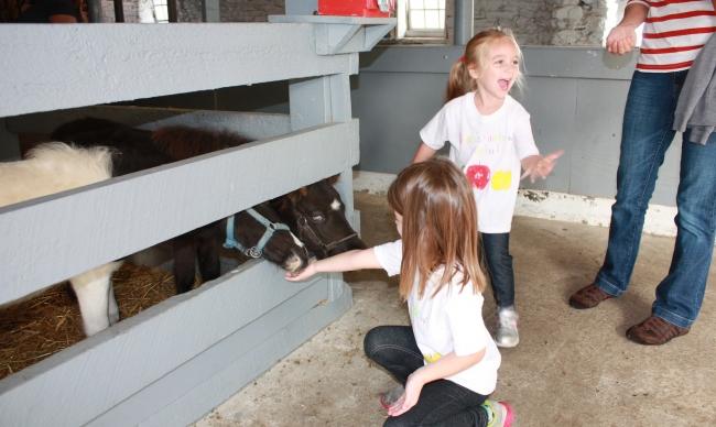 Kids petting ponies