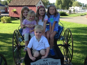 Young kids on Amish buggy