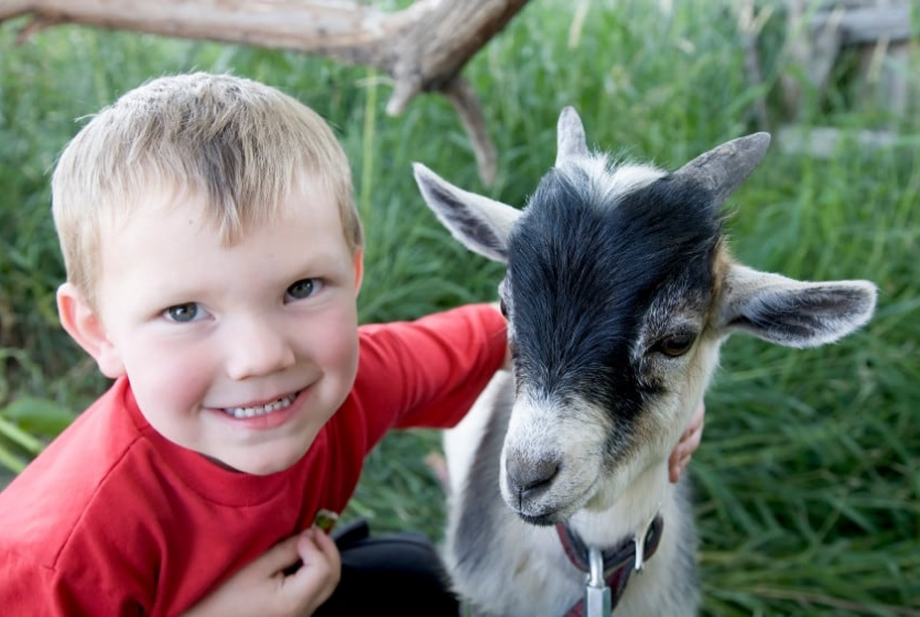 Boy with goat